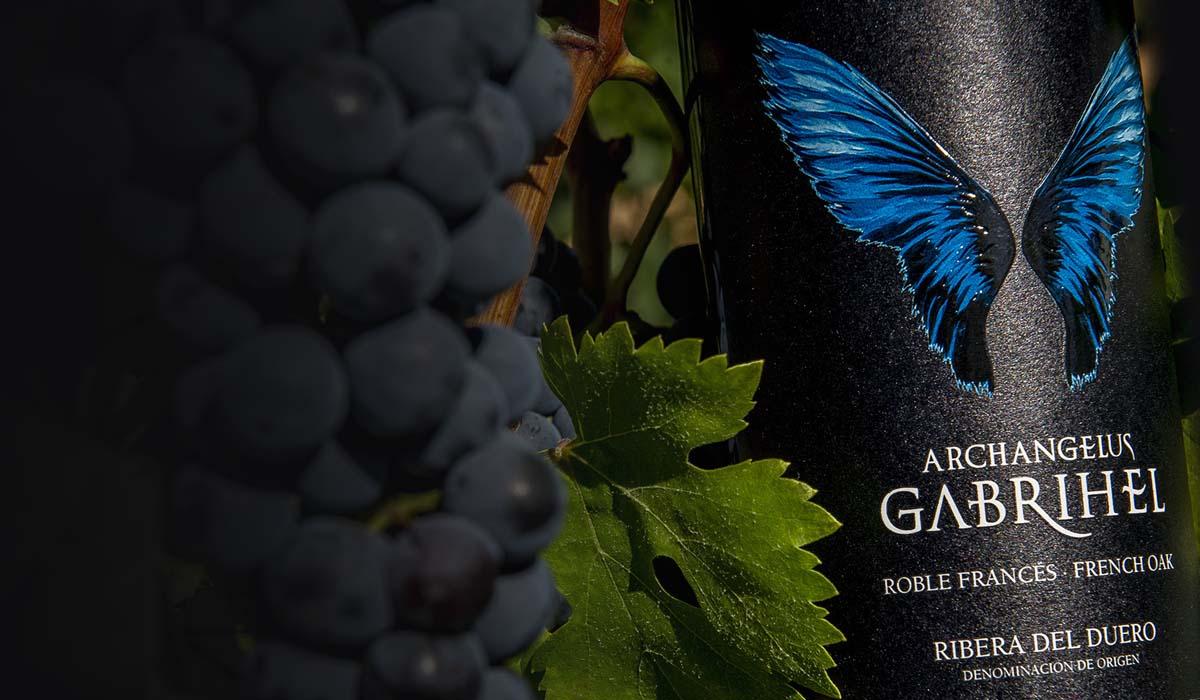 Dimagen - Imagen de producto etiquetas de vino Archagelus Gabrihel Bodegas Astil Ribera del Duero Spain Asturias Graphic Design